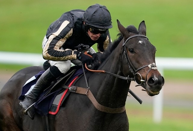 Mcfabulous cut for Stayers' Hurdle at Cheltenham following Persian War victory