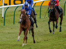 Royal Ascot 2021: The 3 Most Backed Horses on Day 3