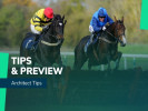 Architect Tips Jumps Season Preview