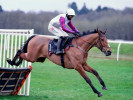 The three most backed horses on day two of the Grand National Festival