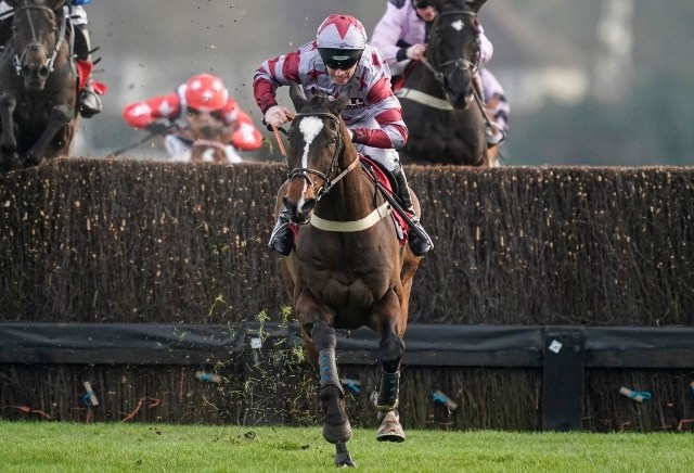 Cheltenham November Meeting: Five horses to follow