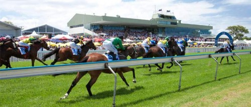 Gold Coast (Saturday) Betting Preview & Tips
