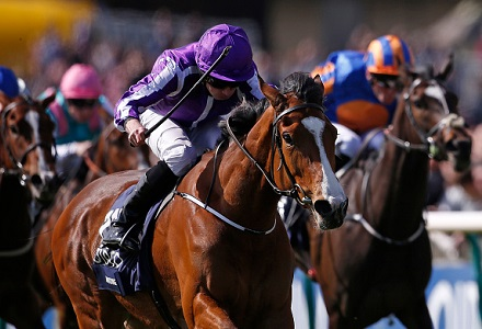 1000 guineas betting