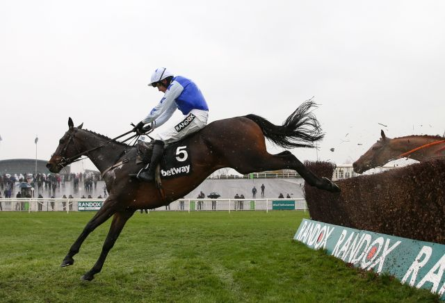Cheltenham Tips & Free Festival Betting Advice from Oddschecker