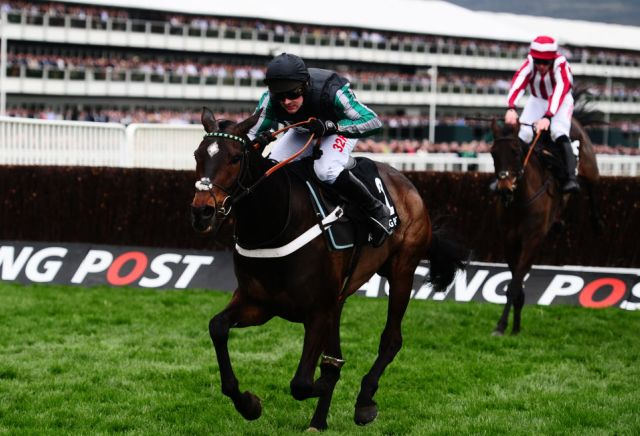 Surge of bets on Altior to win Cheltenham Gold Cup