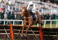 Cheltenham Festival: Top Owner looks a tough ask for Ricci