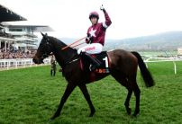 Apples Jade in the eye of punters for the Stayers Hurdle after Fairyhouse victory