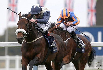 ascot champions day betting trends