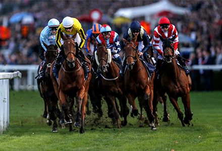 UK Horse Racing Tips: Ascot
