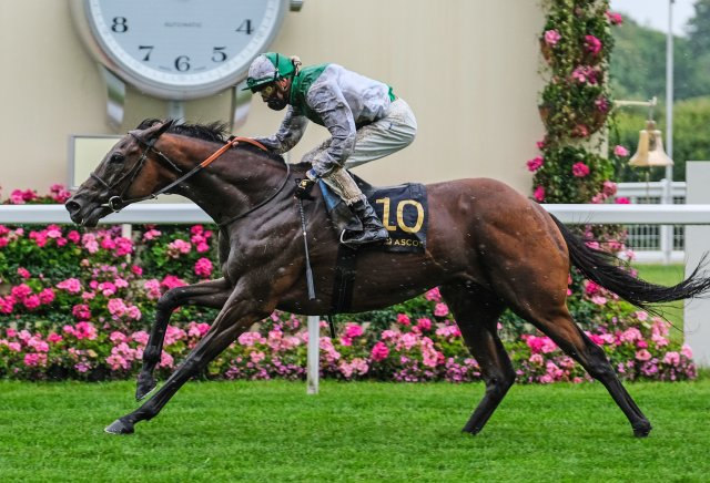 The best bookmaker offers for Royal Ascot day four
