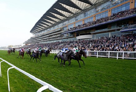 The three most backed horses on day four of Royal Ascot