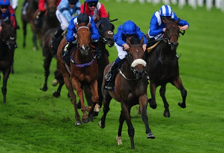 Nick Luck: Traveller the way to go at Ascot