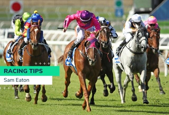 Horse racing betting tips australian football asian handicap betting today betinternet compass