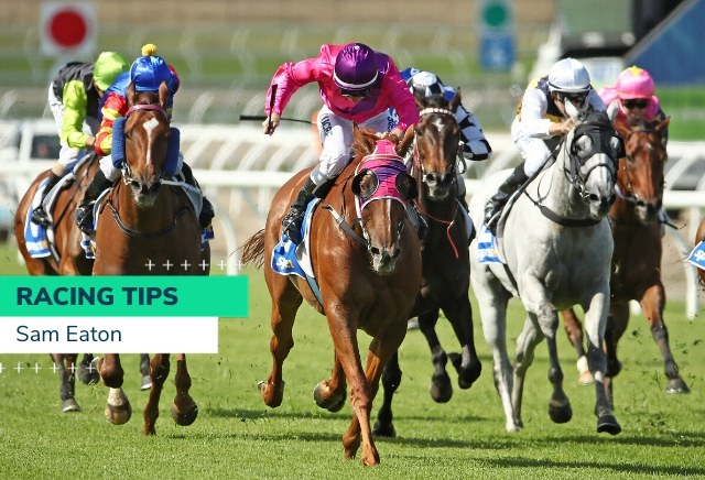 Australian horse betting tips does binary options magnet works
