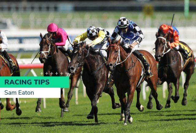 Tuesday Australian Racing Tips