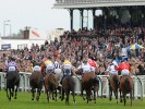 UK Horse Racing Tips: Ayr