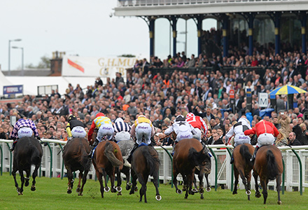 Saturday's Racing Tips