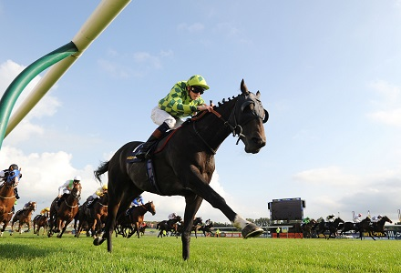 Andy Holding's Scottish Grand National Tips & Preview