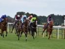 Wednesday's Money Horse through Oddschecker
