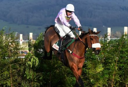 Wings bets soar on lead up to Irish National