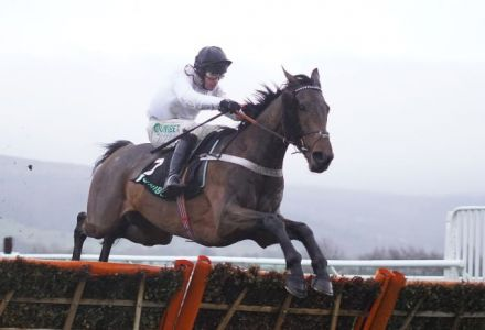 Odds tumble on Brain Power making amends in Champion Hurdle