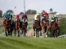UK Horse Racing Tips: Brighton