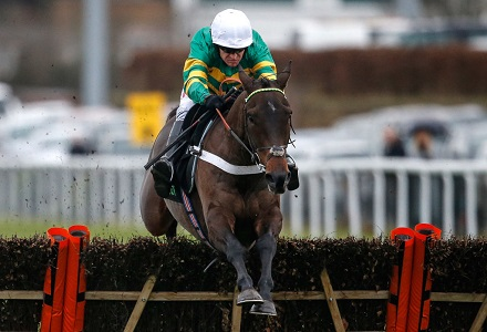 Champion Hurdle: Buveur D'air - Banker or Blowout?