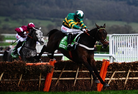 Buveur D'Air costs bookies bucket loads with last-gasp win