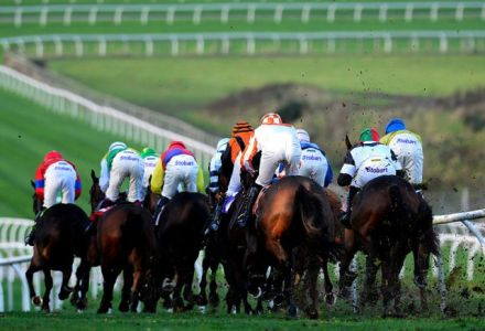 Monday's Money Horse through Oddschecker