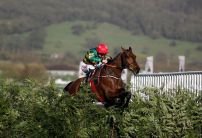 Cause Of Causes cut for Grand National after Cheltenham success