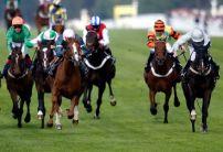 Wednesday Money Horse through Oddschecker