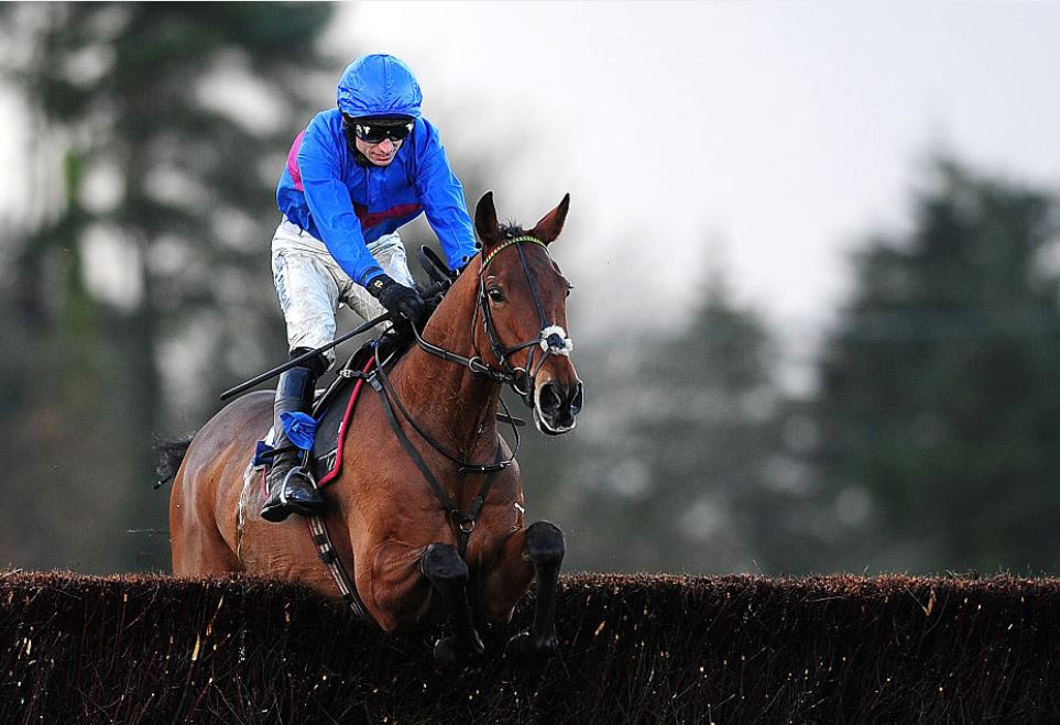Punters chasing a tidy profit in the Grand National