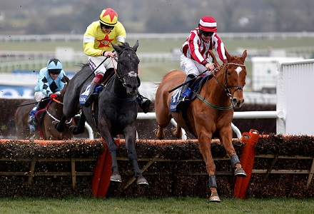 Tom Stanley has two picks at Cheltenham today