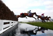 Cheltenham Festival winning jockeys predict punters paradise next month