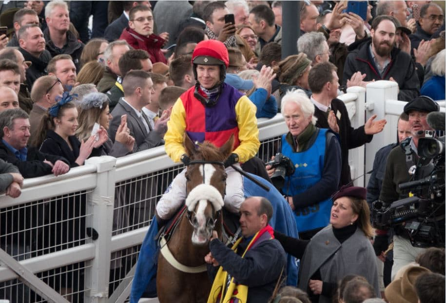 1 in 5 chance that Cheltenham is cancelled, say bookies