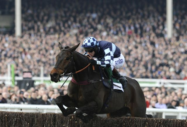 Andy Holding's Arkle Chase Preview