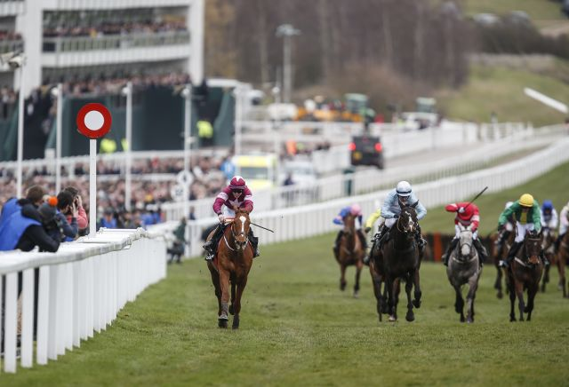 Andy Holding's Ballymore Novices' Hurdle Preview