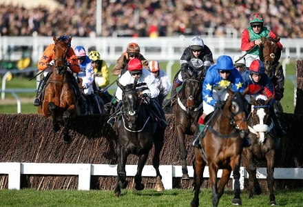 The three most backed horses at the Cheltenham November Meeting day two