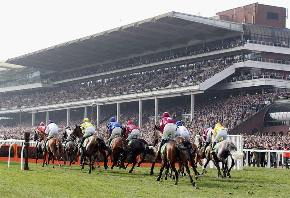 Andy Holding's Cheltenham 2020 Review: Eye-Catchers