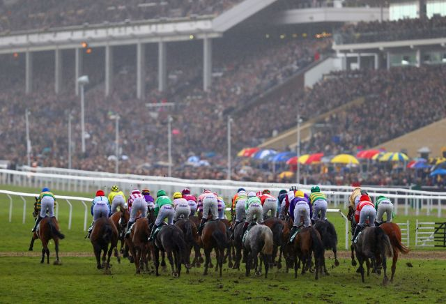 Cheltenham Showcase: The three most backed horses on day two