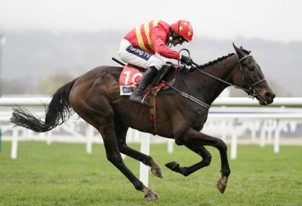Klassical Dream backed for Champion Hurdle following Espoir D'Allen news