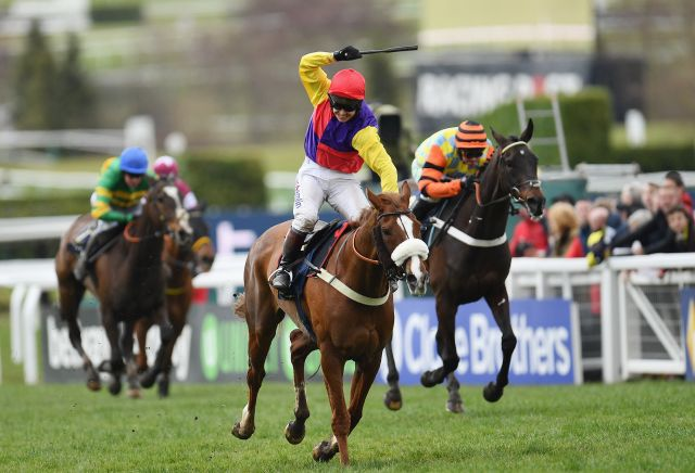 The best bookie offers for the Cheltenham Gold Cup