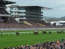 Bookies come up trumps on final day of Cheltenham