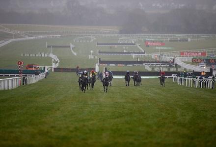 Cheltenham Day Two Money Horse
