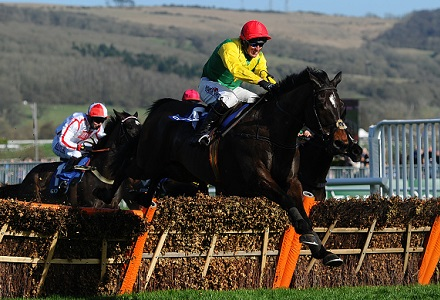 The three most backed horses at the Cheltenham November Meeting day one