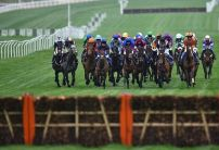 Waiting Patiently's odds slashed for the Ryanair Chase