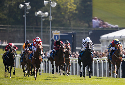 UK Horse Racing Tips: Chester