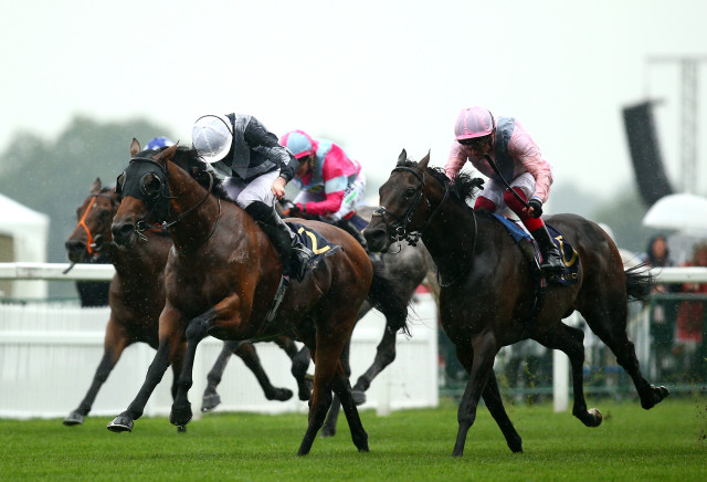 Royal Ascot Tips: Day One Stats and Trends