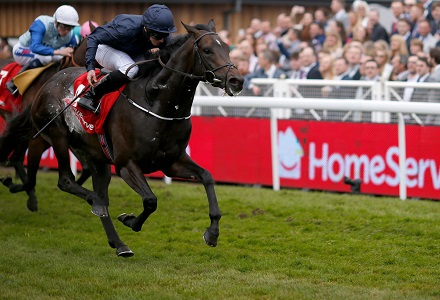 QIPCO Champion Stakes Betting Preview