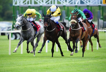 Irish Horse Racing Tips: Cork